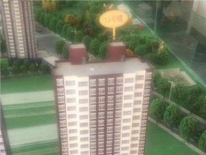 新东城3室2厅1卫55万元