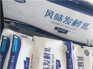 莱阳完达山牛奶专卖
