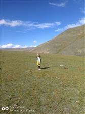 火车马新疆行之哈萨克第一村之旅。