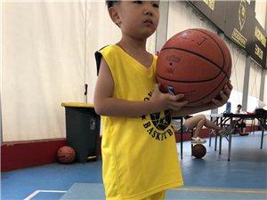 鄭州籃球自如體育青少年籃球羽毛球培訓