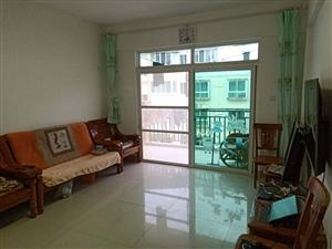 舒适两房,干净整洁便宜急租,拎包入住