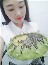 来吃瓜子了