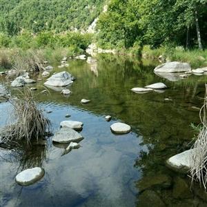 家乡内乡县马山口镇母亲河一一默河,从上游源头一直拍到下游?#36141;影��?</a