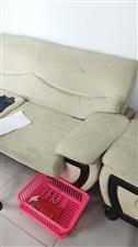 沙发一套,双人床一个各300元,非诚勿扰