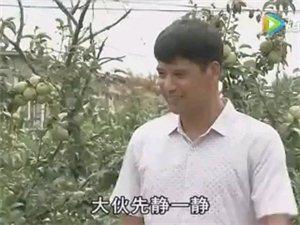 �k�W酒成�L