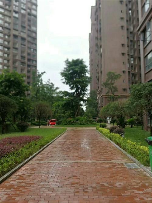 广信鹭岛19楼,27.5万,地理位置佳,交通便利-广汉城市