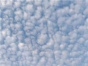 你就说,咱齐齐哈尔的天空有多美,晴天美,阴天也美
