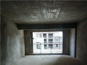 观澜湖3室毛坯房148平米大户型采光好户型方正!!