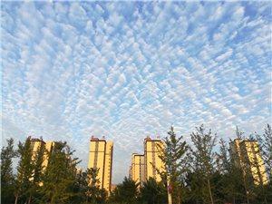 蓝天白云下的高邑县中兴公园