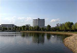 公园半日游