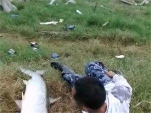 威尼斯人网上娱乐平台钓友钓了一条长达1.6米左右的大鱼,乐坏了