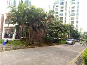 急售南方花园3室 2厅 2卫112万元