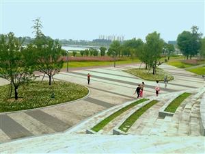 天汉湿地公园秋景迷人(三)