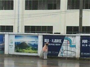 环卫老人,风雨无阻在工作。