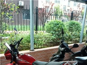 本人有一个九成新摩托车,因为已经有了新车,现在想转让,2500元非诚勿扰,电话13623799495...