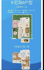 博鳌亚洲湾3室 2厅 3卫450万元