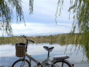 九月份网上买的,自行车,孩子不要了,有要的吗?便宜拿走