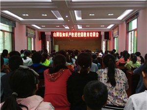 """【访名校】""""山阳县知识产权进校园教育培训会""""在山阳城区二中举行"""