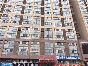 东方金座复式楼2室2厅1卫29万元