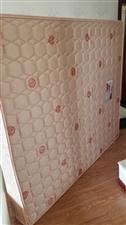 去年8月网上定的席梦思,1.8×2.0米,厚度23,99新-搬家换了个2.0×2.4的床,这个就低价...