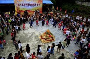 金沙国际娱乐官网县三胡乡今年又是一个丰收年!