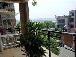 长江国际小高层4室2厅2卫82万元