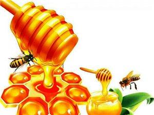 如何辨�e蜂蜜的真假