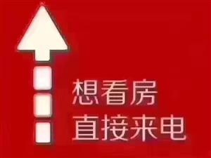 急租:中泰锦城3室2厅1卫1200元/月