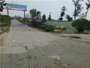 这条路和高速并肩的路有着天壤之别