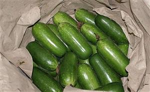 系列养生食补一蔬菜篇(节瓜)