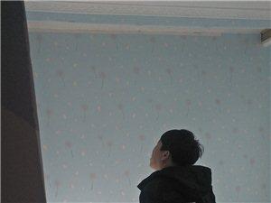 专业拆迁砸墙倒拉极,墙面维修,