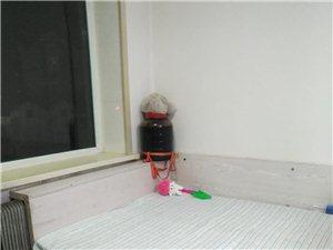县标东2室 1厅 1卫
