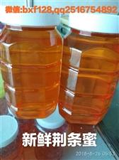 洋槐蜜和蜂王浆的搭配是美容养颜的绝佳护肤产品,不是你不相信,而是你绝对没有使用过。经济实惠而且效果好...