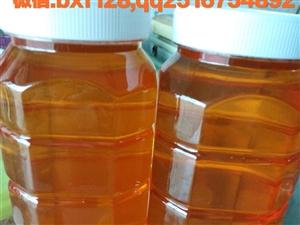 蜂王浆和洋槐蜜的搭配是美容养颜的绝佳护肤产品,不是你想不到的,而是你没有使用过,经济实惠而且效果绝佳...
