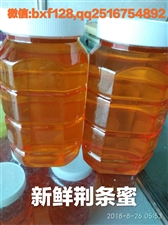 沂源福康蜂产品常年供应洋槐蜜,苹果蜜,荆条蜜,蜂王浆,蜂胶。无理由退货,质量保证。 微信bxf12...