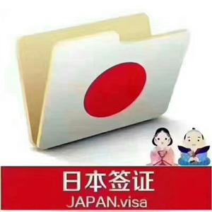 办各国签证