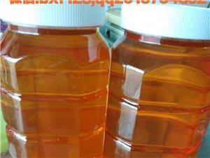 沂源福康蜂產品