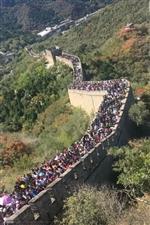 国庆过了,人挤人,累了,是不是该回来补补胃了!