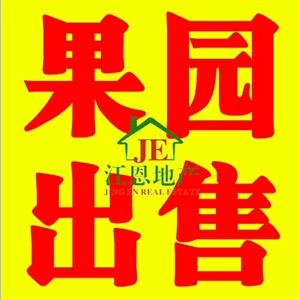 东江果园出售