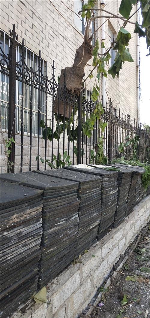 塑胶地垫一批,每块50?50公分,4块地垫是一个平方。因园内改造用不了这么多,现对外处理一部分,有需...