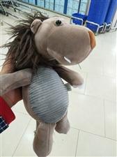 55块钱买了一只小丑马
