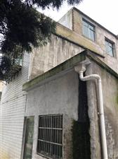 建筑面积320平米