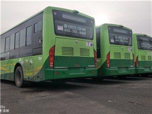 齐齐哈尔7路和10路新公交车到啦,以后可以坐新车啦