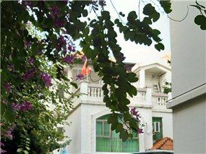 泰安苑别墅5室3厅3卫180万元,包过户面谈