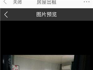 滨江路江景房400元/间/月