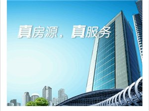 碧桂园108平米+毛坯24楼可按揭!