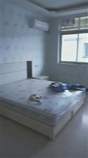 姜子牙广场百盛附近大量单身公寓可付三押一