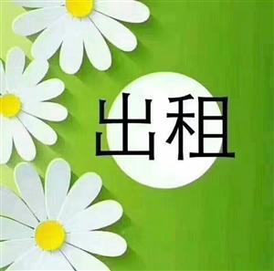 洋中学院店面 毛坯65平月租1200元