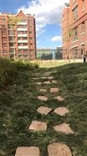 公园里两居室带花园65万元