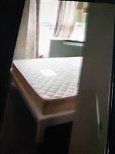 小广场太平岗1室1厅1卫500元/月